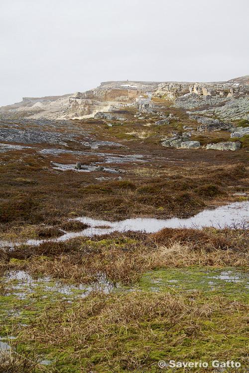 Varangerfjord - Norvegia