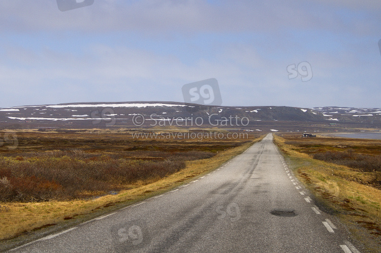 Strada per Vardo - Norvegia