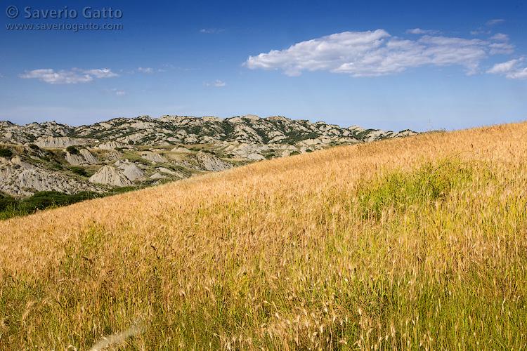 Landscape in Basilicata