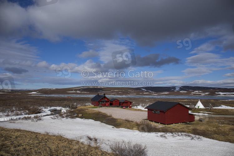 Tundra norvegese, paesaggio a båtsfjordfjellet
