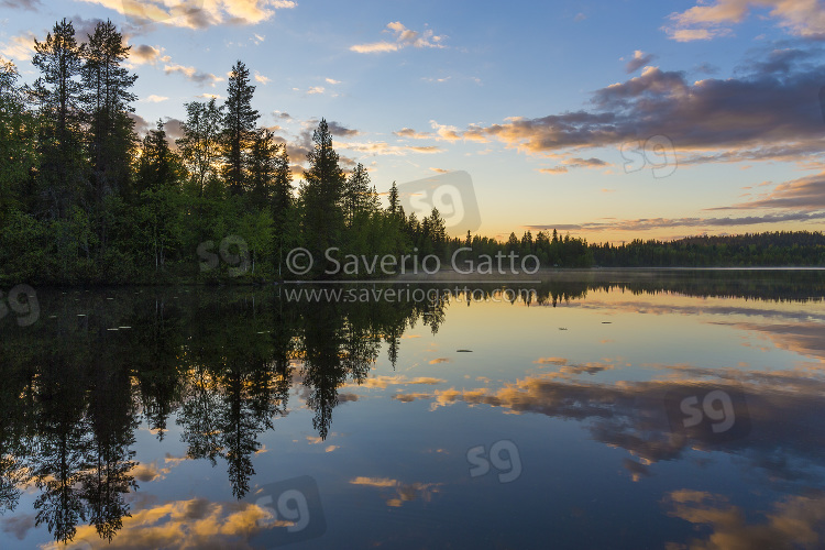 Lago Porontima - Finlandia, tramonto con alberi e riflessi sull'acqua