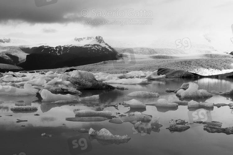 Laguna di Fjallsarlon (Islanda)