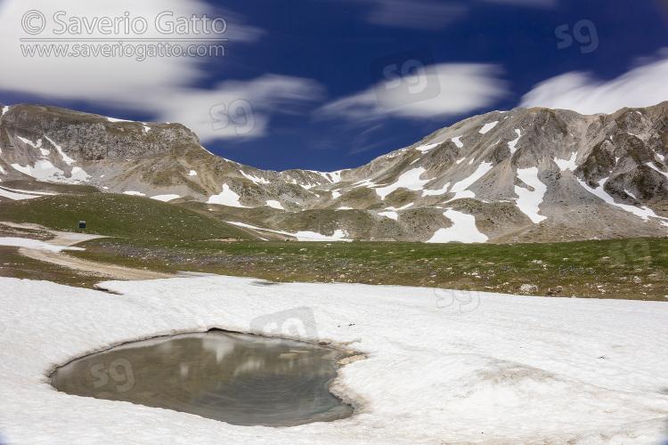 Paesaggio montano, vette del gran sasso con neve e fioriture