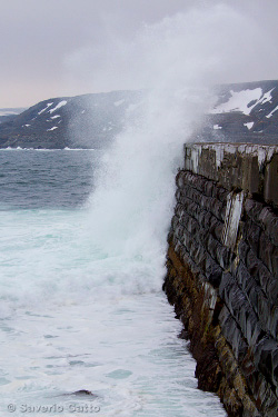 Hammingberg - Norvegia