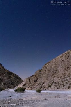 Wadi in Oman illuminato dalla luna
